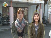 日南まるかじり 3/1~3/15放送