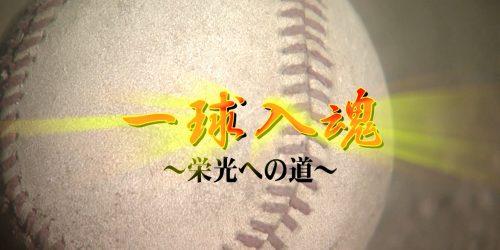 一挙放送!特別番組 一球入魂 ~栄光への道~