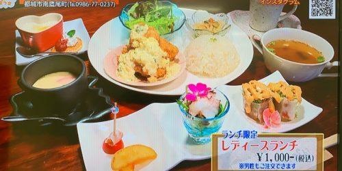 天然うまうま(05/21~05/31放送)